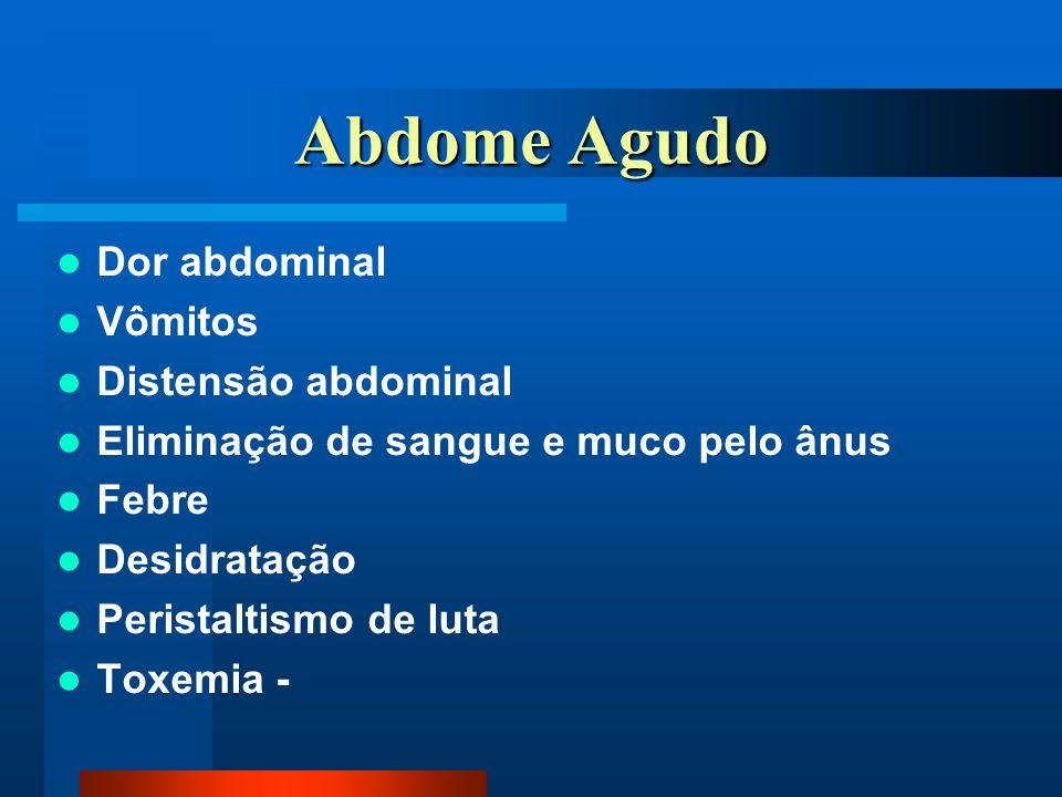 Abdome Agudo Dor abdominal Vômitos Distensão abdominal Eliminação de sangue e muco pelo ânus Febre Desidratação Peristaltismo de luta Toxemia -