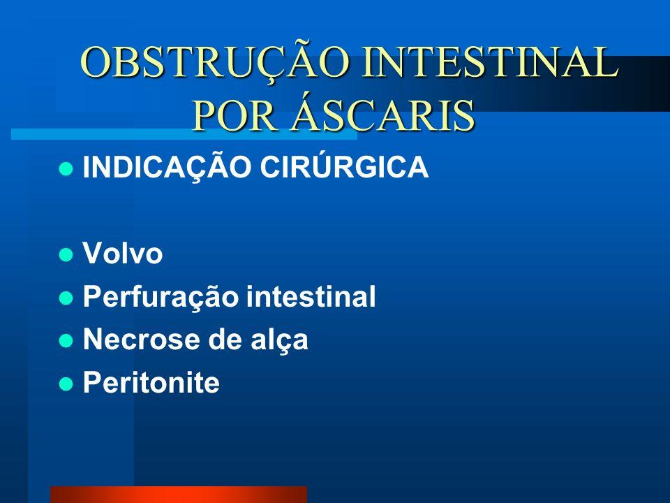 OBSTRUÇÃO INTESTINAL POR ÁSCARIS OBSTRUÇÃO INTESTINAL POR ÁSCARIS INDICAÇÃO CIRÚRGICA Volvo Perfuração intestinal Necrose de alça Peritonite