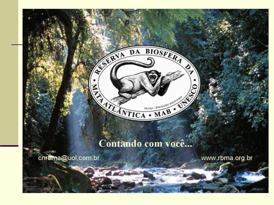 CONVENÇÃO DA BIODIVERSIDADE Ou CONVENÇÃO SOBRE DIVERSIDADE BIOLÓGICA - CDB - foi assinada por 156 países incluindo o Brasil durante a Conferência das Nações Unidas sobre Meio Ambiente e Desenvolvimento ou Eco-92, e ratificada pelo Congresso Nacional em 1994.