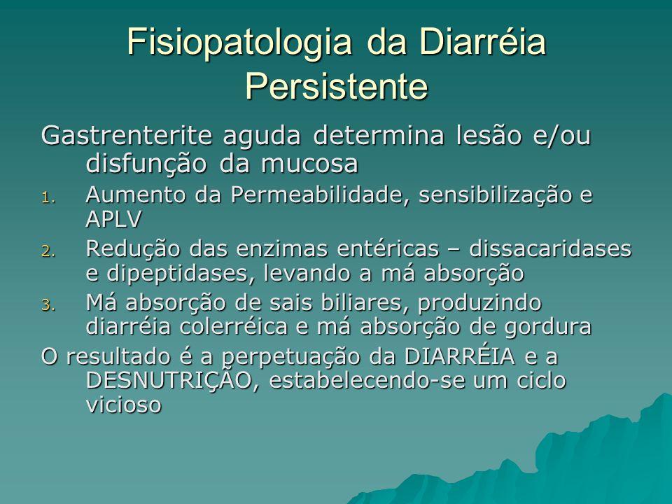 Fisiopatologia da Diarréia Persistente Gastrenterite aguda determina lesão e/ou disfunção da mucosa 1.