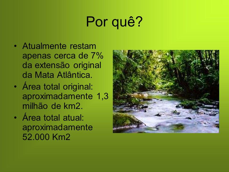 Porque: Garça branca caxinguelê O plantio de árvores contribui para a preservação das espécies ameaçadas de extinção.