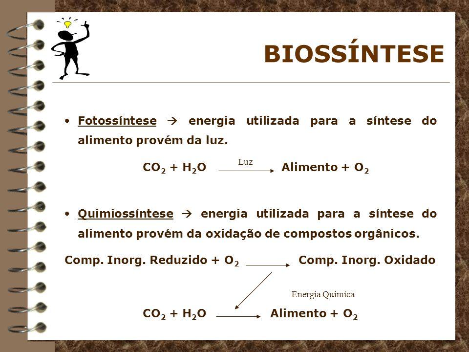 BIOSSÍNTESE Fotossíntese energia utilizada para a síntese do alimento provém da luz. CO 2 + H 2 O Alimento + O 2 Quimiossíntese energia utilizada para