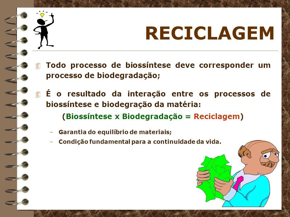 RECICLAGEM 4 Todo processo de biossíntese deve corresponder um processo de biodegradação; 4 É o resultado da interação entre os processos de biossínte