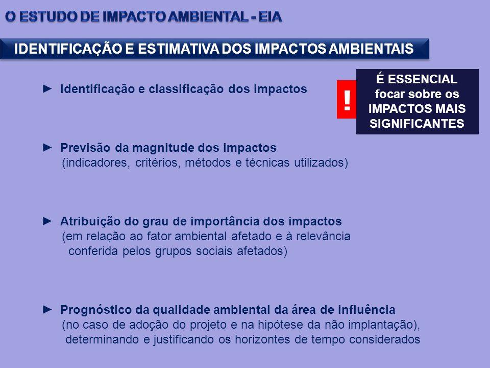 Identificação e classificação dos impactos Previsão da magnitude dos impactos (indicadores, critérios, métodos e técnicas utilizados) Atribuição do gr