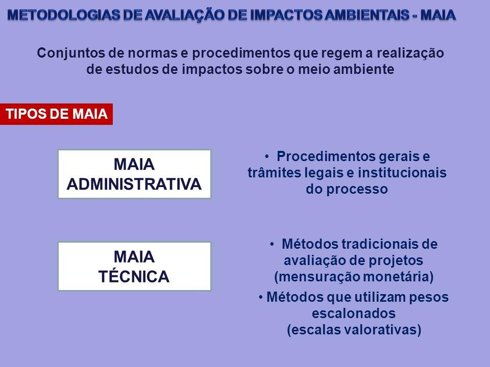 Conjuntos de normas e procedimentos que regem a realização de estudos de impactos sobre o meio ambiente TIPOS DE MAIA MAIA ADMINISTRATIVA Procedimento