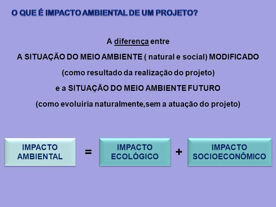 A diferença entre A SITUAÇÃO DO MEIO AMBIENTE ( natural e social) MODIFICADO (como resultado da realização do projeto) e a SITUAÇÃO DO MEIO AMBIENTE F