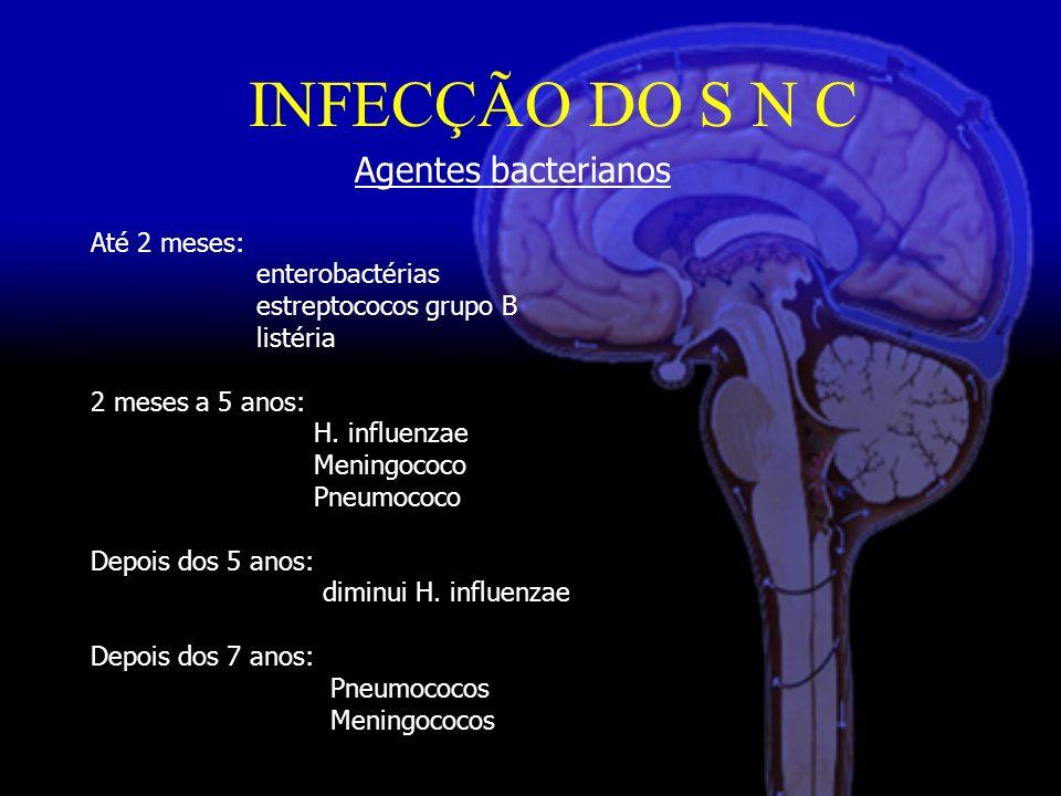 INFECÇÃO DO S N C Agentes bacterianos Até 2 meses: enterobactérias estreptococos grupo B listéria 2 meses a 5 anos: H.