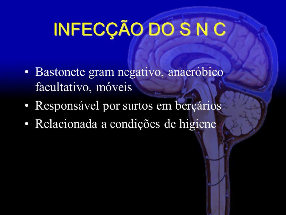 Bastonete gram negativo, anaeróbico facultativo, móveis Responsável por surtos em berçários Relacionada a condições de higiene INFECÇÃO DO S N C
