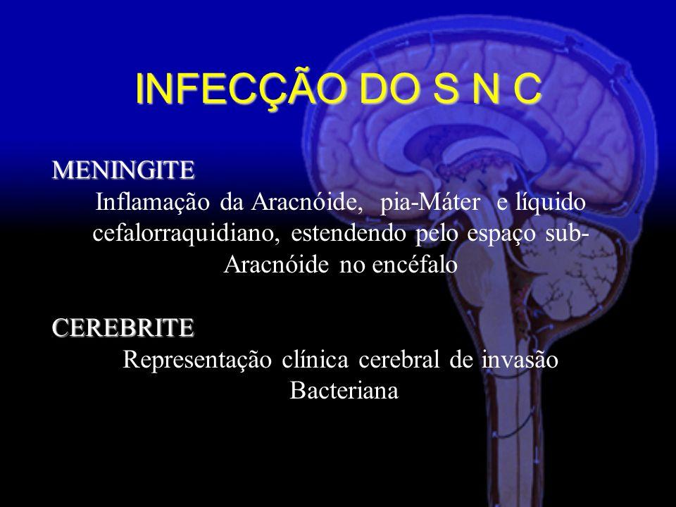 MENINGITE Inflamação da Aracnóide, pia-Máter e líquido cefalorraquidiano, estendendo pelo espaço sub- Aracnóide no encéfalo CEREBRITE CEREBRITE Representação clínica cerebral de invasão Bacteriana