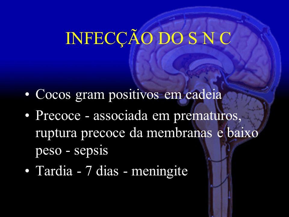 Cocos gram positivos em cadeia Precoce - associada em prematuros, ruptura precoce da membranas e baixo peso - sepsis Tardia - 7 dias - meningite INFECÇÃO DO S N C