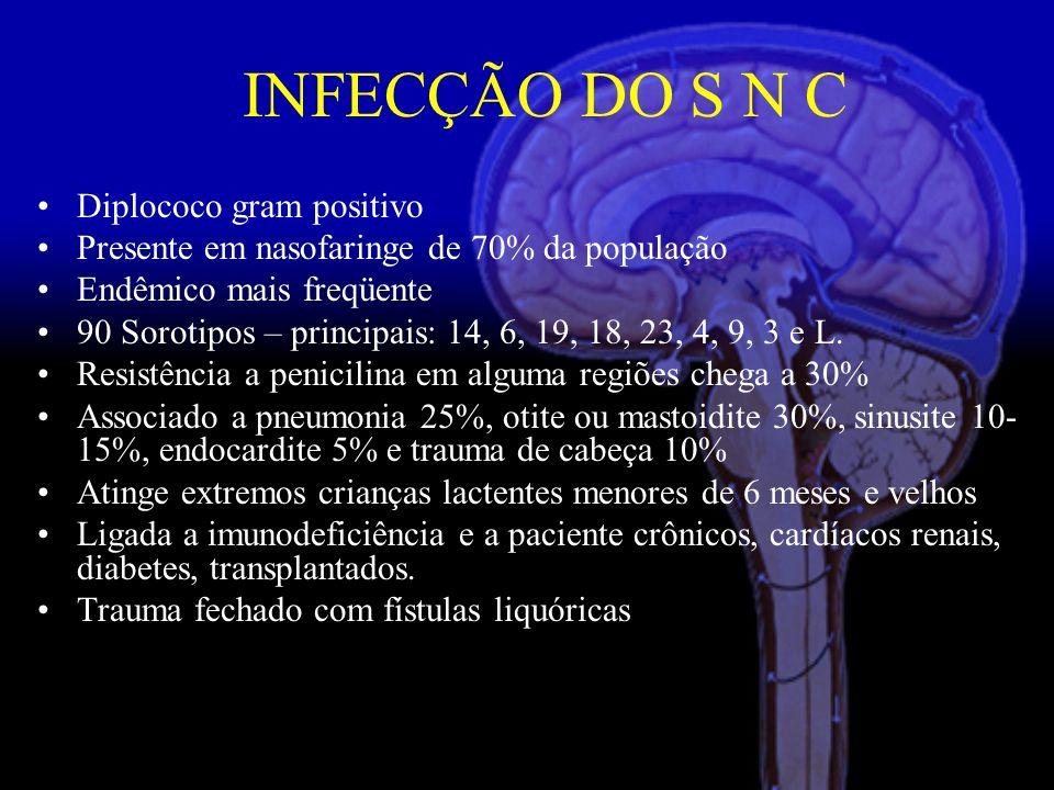 Diplococo gram positivo Presente em nasofaringe de 70% da população Endêmico mais freqüente 90 Sorotipos – principais: 14, 6, 19, 18, 23, 4, 9, 3 e L.