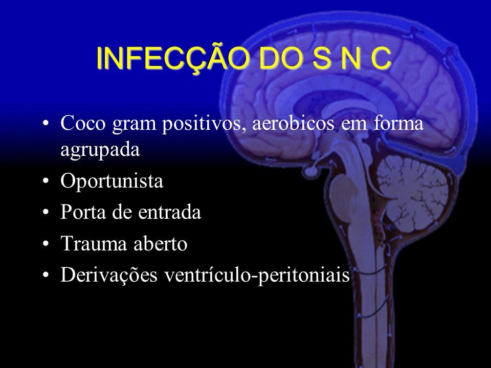Coco gram positivos, aerobicos em forma agrupada Oportunista Porta de entrada Trauma aberto Derivações ventrículo-peritoniais INFECÇÃO DO S N C
