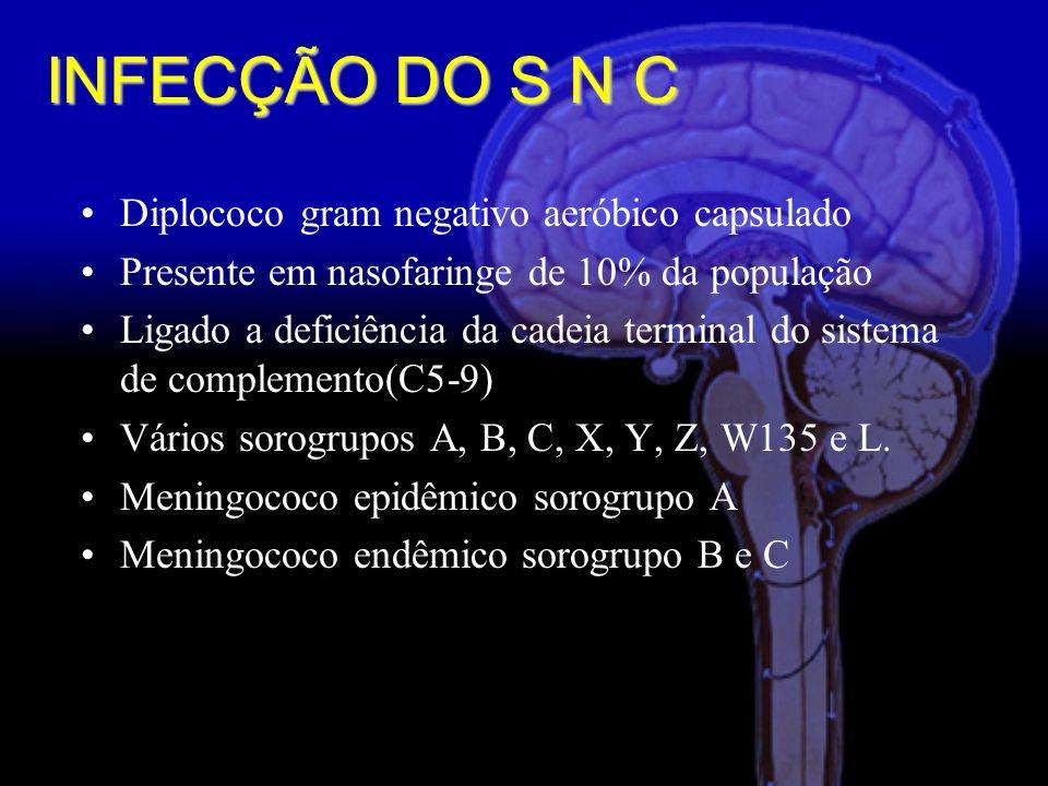 Diplococo gram negativo aeróbico capsulado Presente em nasofaringe de 10% da população Ligado a deficiência da cadeia terminal do sistema de complemento(C5-9) Vários sorogrupos A, B, C, X, Y, Z, W135 e L.