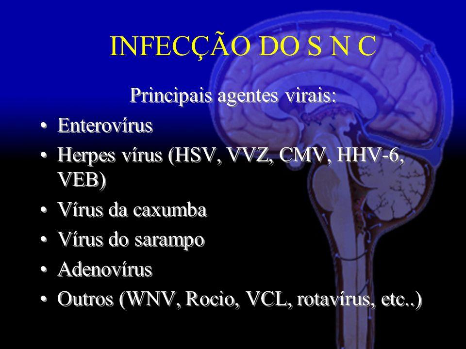 Principais agentes virais: Enterovírus Herpes vírus (HSV, VVZ, CMV, HHV-6, VEB) Vírus da caxumba Vírus do sarampo Adenovírus Outros (WNV, Rocio, VCL, rotavírus, etc..) Principais agentes virais: Enterovírus Herpes vírus (HSV, VVZ, CMV, HHV-6, VEB) Vírus da caxumba Vírus do sarampo Adenovírus Outros (WNV, Rocio, VCL, rotavírus, etc..) INFECÇÃO DO S N C