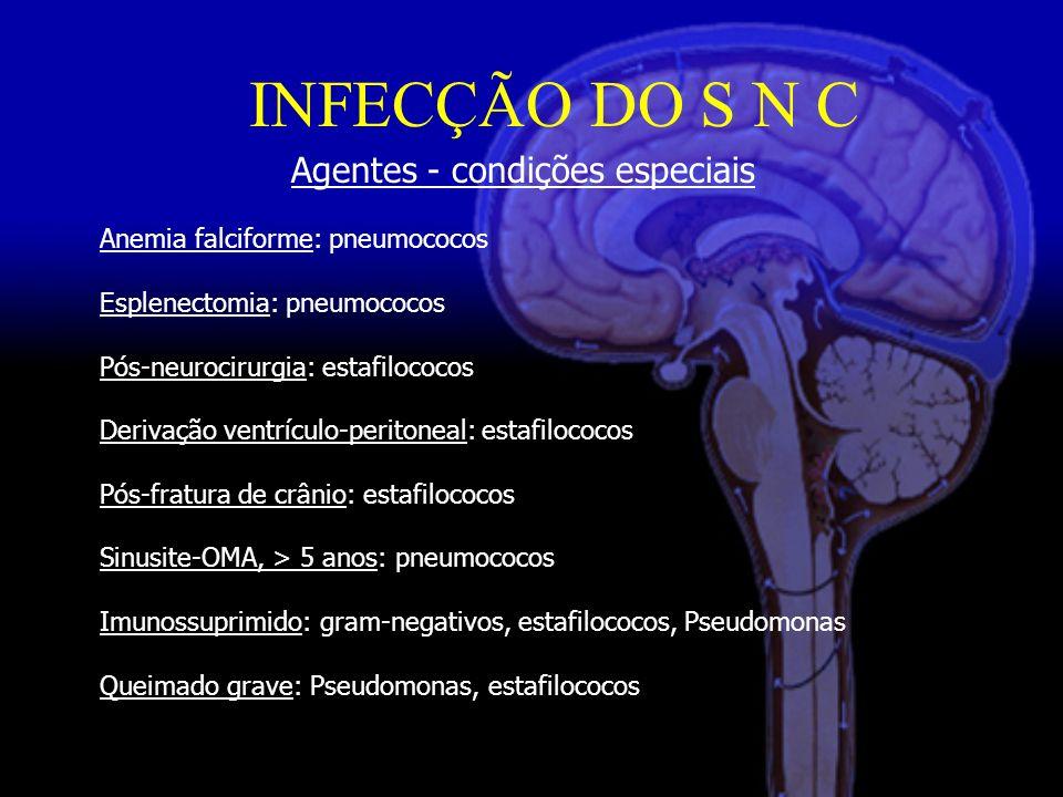 Agentes - condições especiais Anemia falciforme: pneumococos Esplenectomia: pneumococos Pós-neurocirurgia: estafilococos Derivação ventrículo-peritoneal: estafilococos Pós-fratura de crânio: estafilococos Sinusite-OMA, > 5 anos: pneumococos Imunossuprimido: gram-negativos, estafilococos, Pseudomonas Queimado grave: Pseudomonas, estafilococos