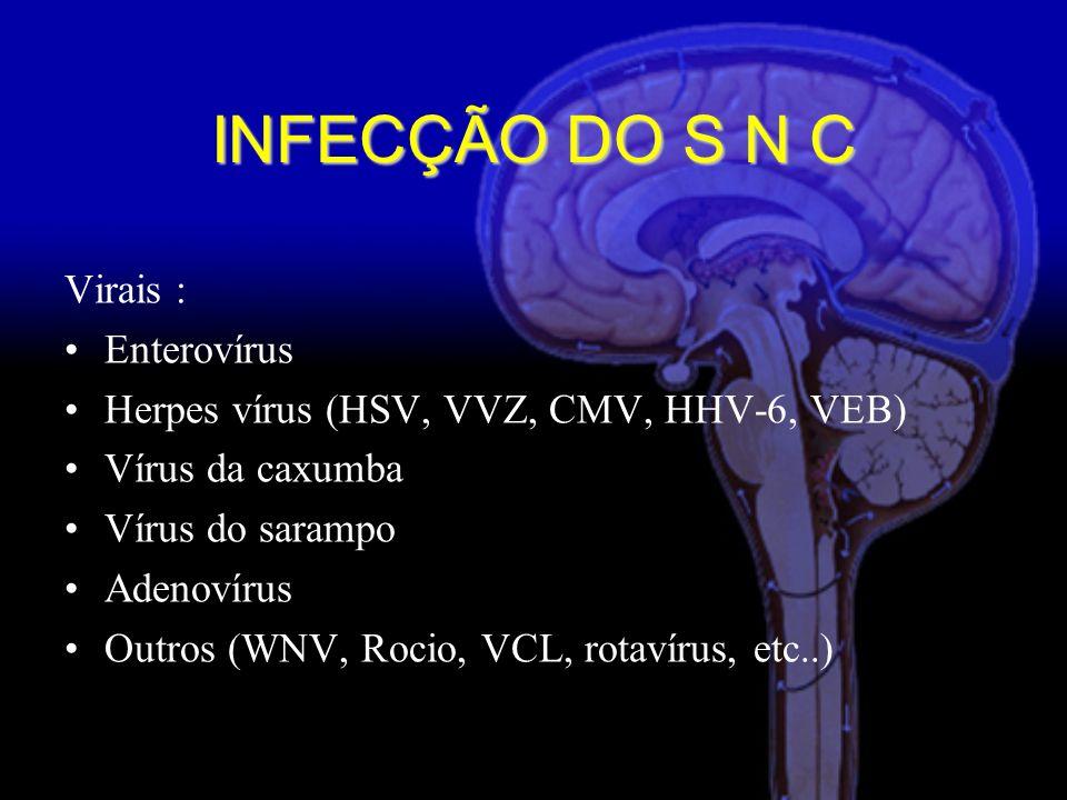 INFECÇÃO DO S N C Virais : Enterovírus Herpes vírus (HSV, VVZ, CMV, HHV-6, VEB) Vírus da caxumba Vírus do sarampo Adenovírus Outros (WNV, Rocio, VCL, rotavírus, etc..)