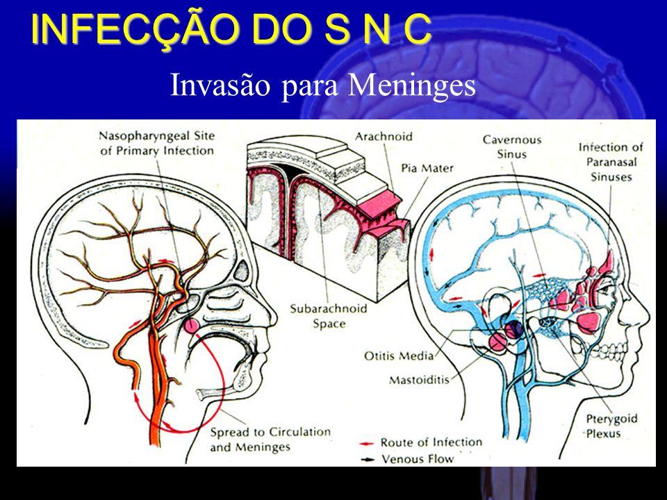 INVASÃO DO SNC RESPOSTA INFLAMATÓRIA DO HOSPEDEIRO MEDIADORES INFLAMATÓRIOS ENDÓGENOS MOLÉCULAS DE ADESÃO CELULAR ALTERAÇÃO DO FLUXO SANGÜÍNEO CEREBRAL AUMENTO DA PRESSÃO INTRACRANIANA DISFUNÇÃO NEURONAL MORTE ENCEFÁLICA Fisiopatologia INFECÇÃO DO S N C