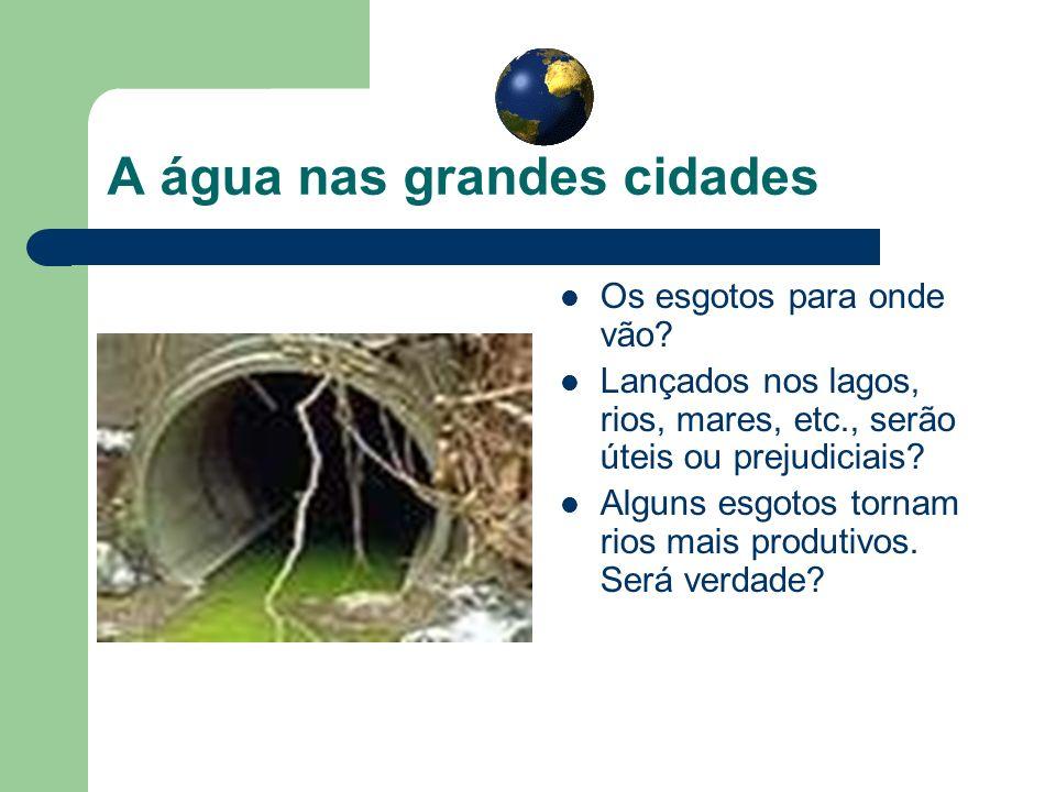 A água nas grandes cidades Os esgotos para onde vão? Lançados nos lagos, rios, mares, etc., serão úteis ou prejudiciais? Alguns esgotos tornam rios ma