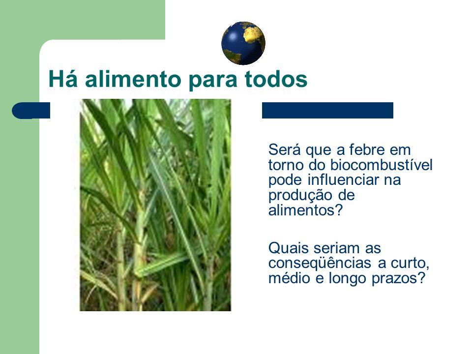 Há alimento para todos Será que a febre em torno do biocombustível pode influenciar na produção de alimentos? Quais seriam as conseqüências a curto, m