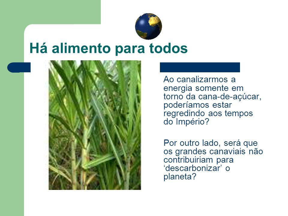 Há alimento para todos Ao canalizarmos a energia somente em torno da cana-de-açúcar, poderíamos estar regredindo aos tempos do Império? Por outro lado