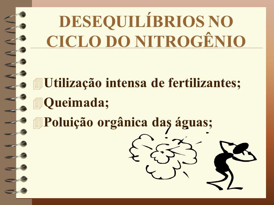 DESEQUILÍBRIOS NO CICLO DO NITROGÊNIO 4 Utilização intensa de fertilizantes; 4 Queimada; 4 Poluição orgânica das águas;