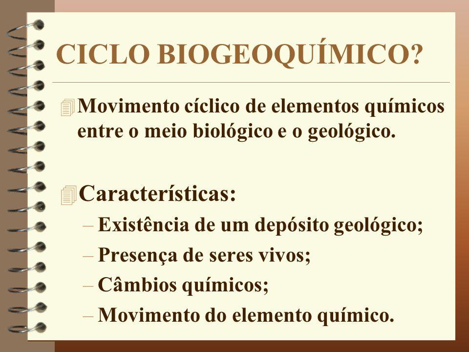 CICLO BIOGEOQUÍMICO? 4 Movimento cíclico de elementos químicos entre o meio biológico e o geológico. 4 Características: –Existência de um depósito geo