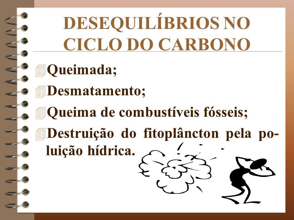 DESEQUILÍBRIOS NO CICLO DO CARBONO 4 Queimada; 4 Desmatamento; 4 Queima de combustíveis fósseis; 4 Destruição do fitoplâncton pela po- luição hídrica.