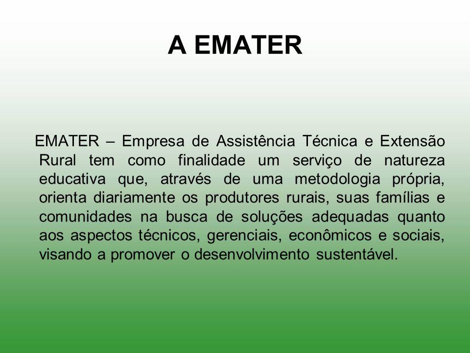 A EMATER EMATER – Empresa de Assistência Técnica e Extensão Rural tem como finalidade um serviço de natureza educativa que, através de uma metodologia