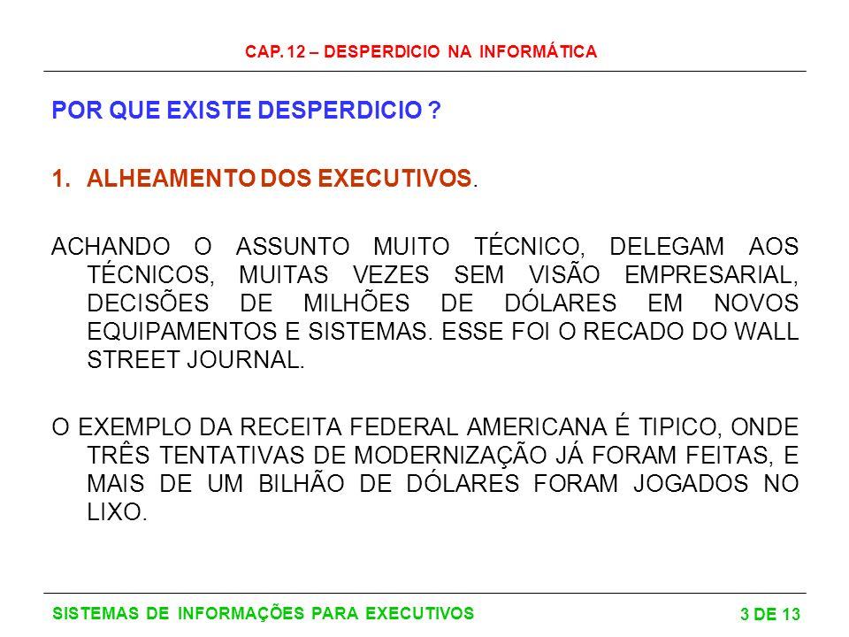 CAP.12 – DESPERDICIO NA INFORMÁTICA 4 DE 13 SISTEMAS DE INFORMAÇÕES PARA EXECUTIVOS 2.