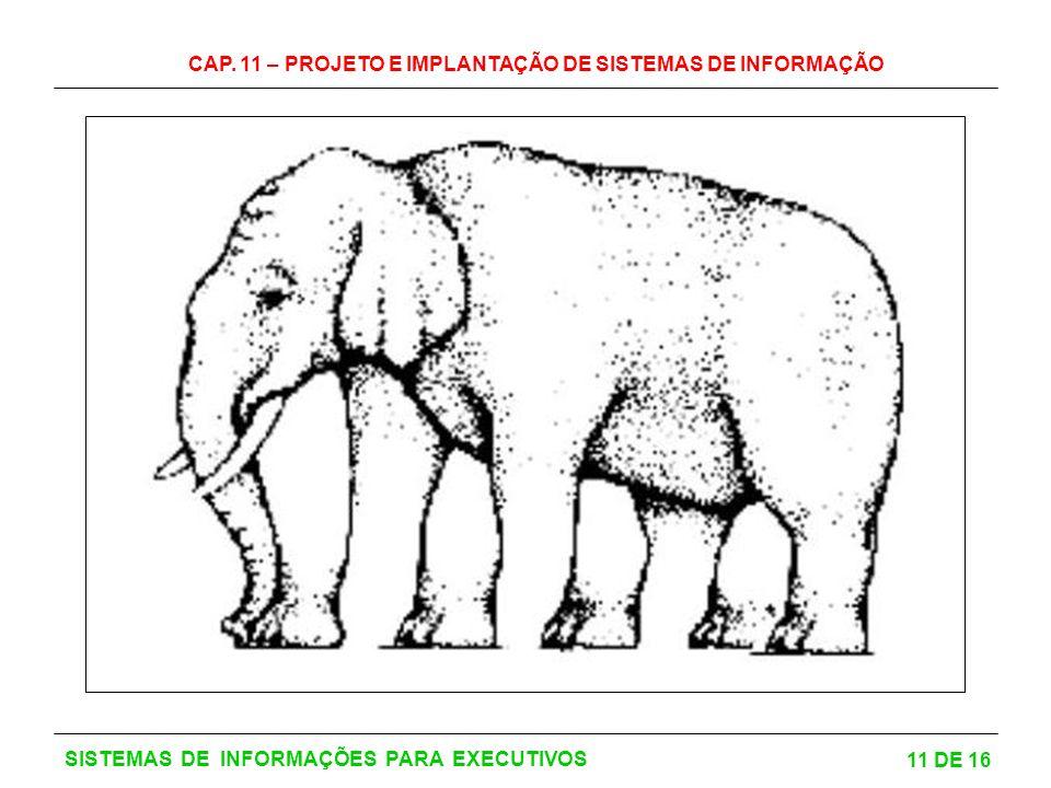 CAP. 11 – PROJETO E IMPLANTAÇÃO DE SISTEMAS DE INFORMAÇÃO 11 DE 16 SISTEMAS DE INFORMAÇÕES PARA EXECUTIVOS