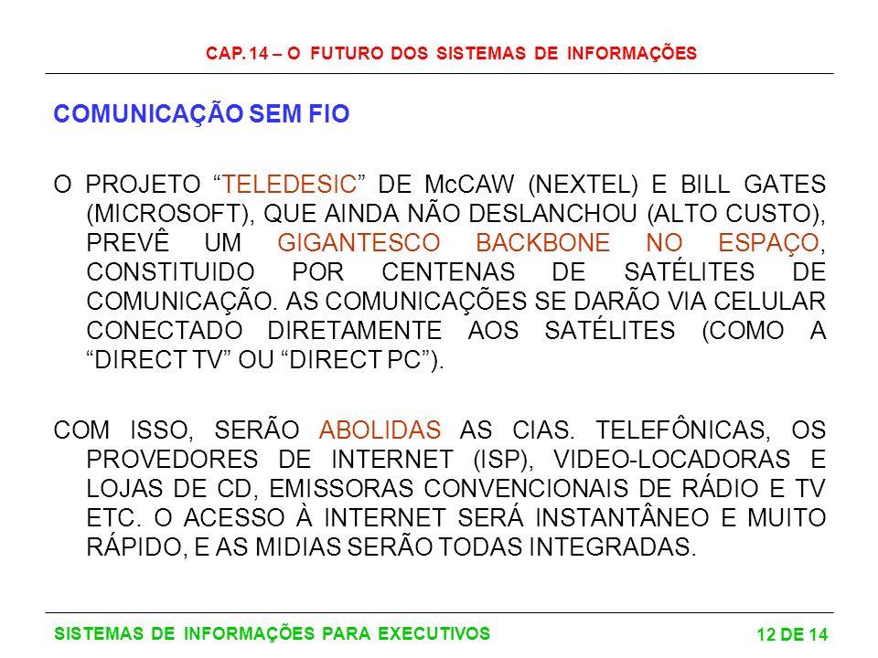 CAP. 14 – O FUTURO DOS SISTEMAS DE INFORMAÇÕES 12 DE 14 SISTEMAS DE INFORMAÇÕES PARA EXECUTIVOS COMUNICAÇÃO SEM FIO O PROJETO TELEDESIC DE McCAW (NEXT