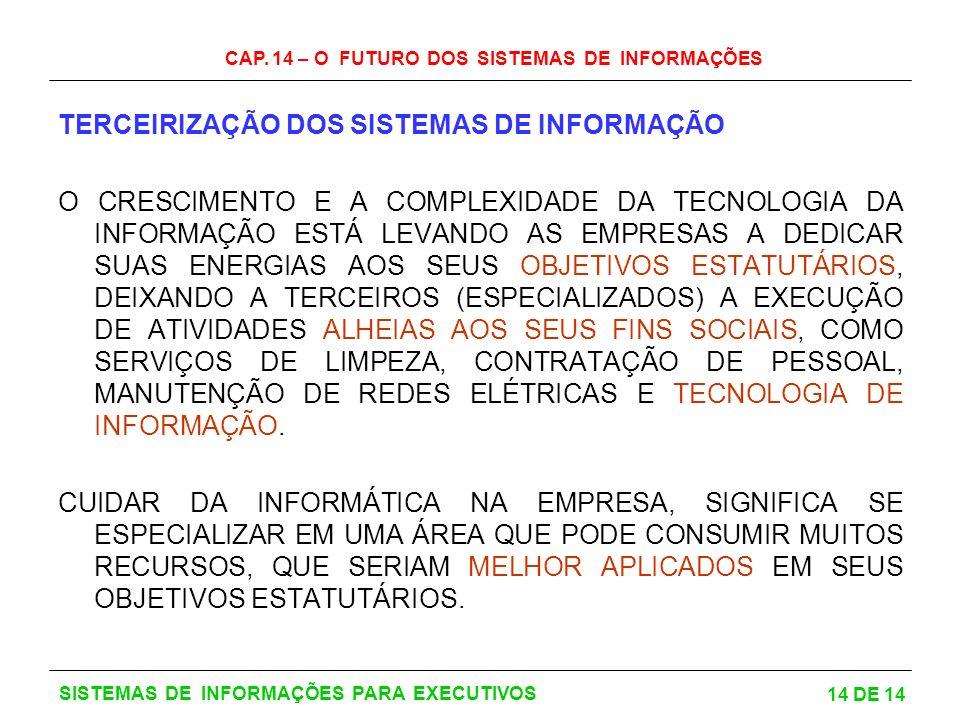 CAP. 14 – O FUTURO DOS SISTEMAS DE INFORMAÇÕES 14 DE 14 SISTEMAS DE INFORMAÇÕES PARA EXECUTIVOS TERCEIRIZAÇÃO DOS SISTEMAS DE INFORMAÇÃO O CRESCIMENTO