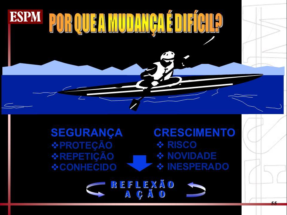 55 SEGURANÇA CRESCIMENTO PROTEÇÃO REPETIÇÃO CONHECIDO RISCO NOVIDADE INESPERADO R E F L E X Ã O A Ç Ã O