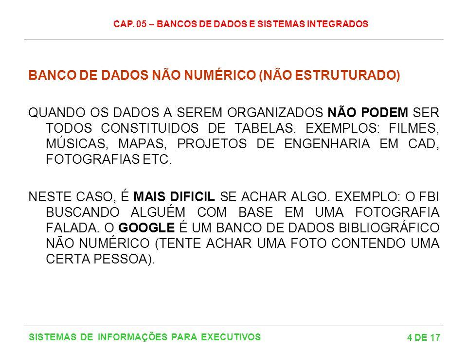 CAP. 05 – BANCOS DE DADOS E SISTEMAS INTEGRADOS 4 DE 17 SISTEMAS DE INFORMAÇÕES PARA EXECUTIVOS BANCO DE DADOS NÃO NUMÉRICO (NÃO ESTRUTURADO) QUANDO O