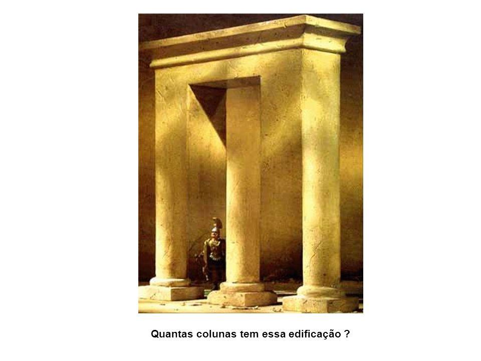 Quantas colunas tem essa edificação ?