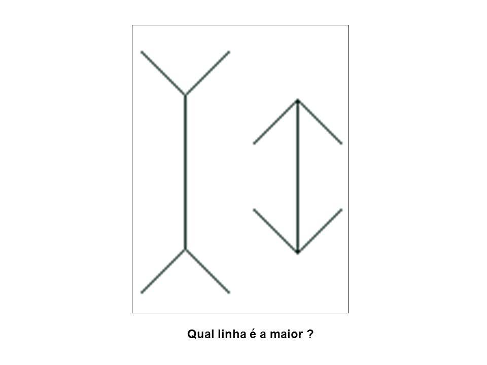 Qual linha é a maior ?