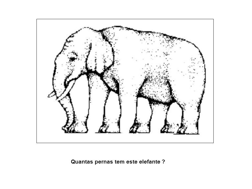 Quantas pernas tem este elefante ?