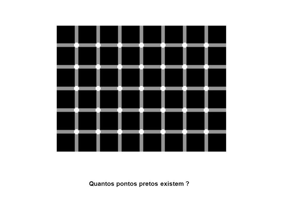 Quantos pontos pretos existem ?