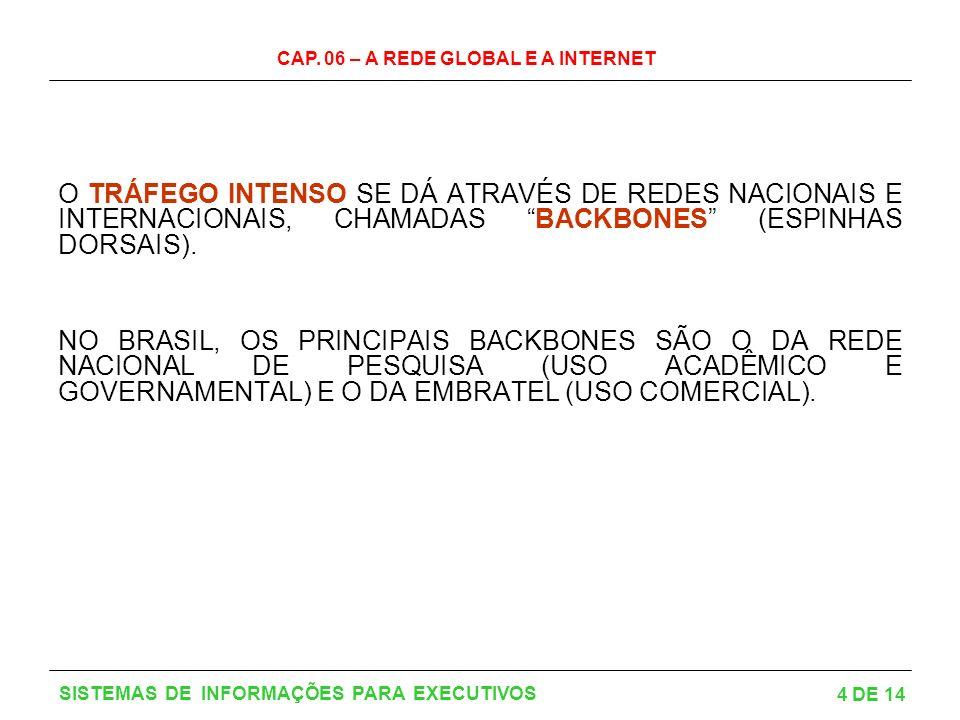 CAP. 06 – A REDE GLOBAL E A INTERNET 5 DE 14 SISTEMAS DE INFORMAÇÕES PARA EXECUTIVOS