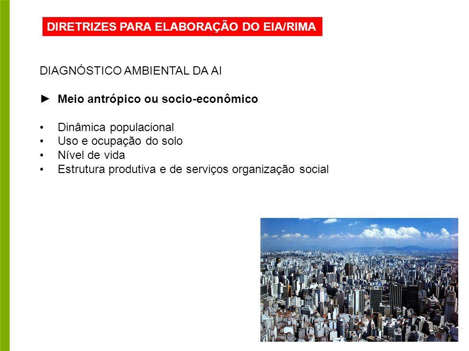 DIRETRIZES PARA ELABORAÇÃO DO EIA/RIMA DIAGNÓSTICO AMBIENTAL DA AI Meio antrópico ou socio-econômico Dinâmica populacional Uso e ocupação do solo Nível de vida Estrutura produtiva e de serviços organização social