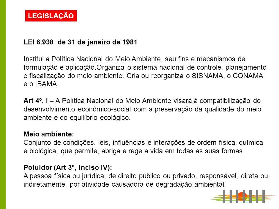 LEGISLAÇÃO LEI 6.938 de 31 de janeiro de 1981 Institui a Política Nacional do Meio Ambiente, seu fins e mecanismos de formulação e aplicação.Organiza o sistema nacional de controle, planejamento e fiscalização do meio ambiente.