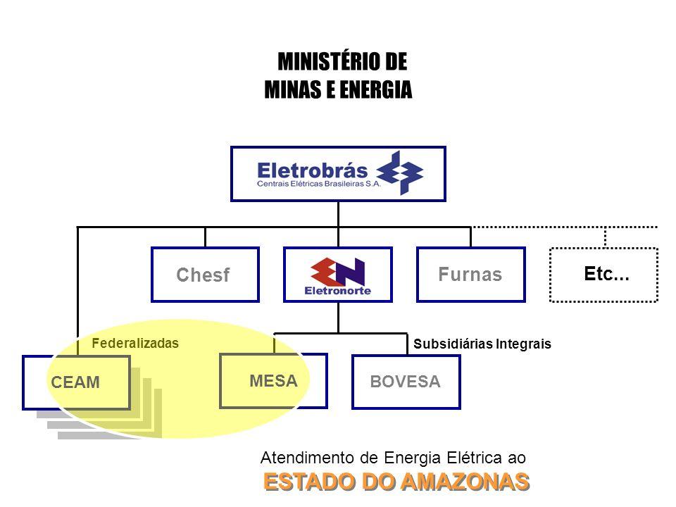 Chesf Furnas MINISTÉRIO DE MINAS E ENERGIA Etc... Federalizadas CEAM Subsidiárias Integrais BOVESA MESA ESTADO DO AMAZONAS Atendimento de Energia Elét