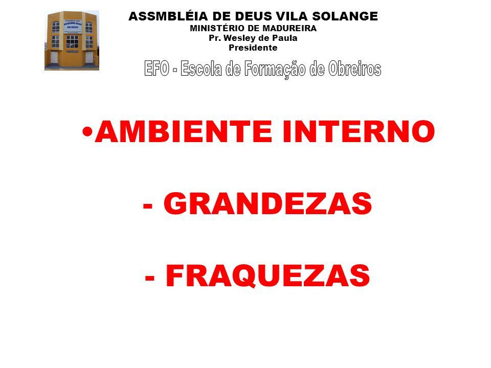 ASSMBLÉIA DE DEUS VILA SOLANGE MINISTÉRIO DE MADUREIRA Pr. Wesley de Paula Presidente AMBIENTE INTERNO - GRANDEZAS - FRAQUEZAS