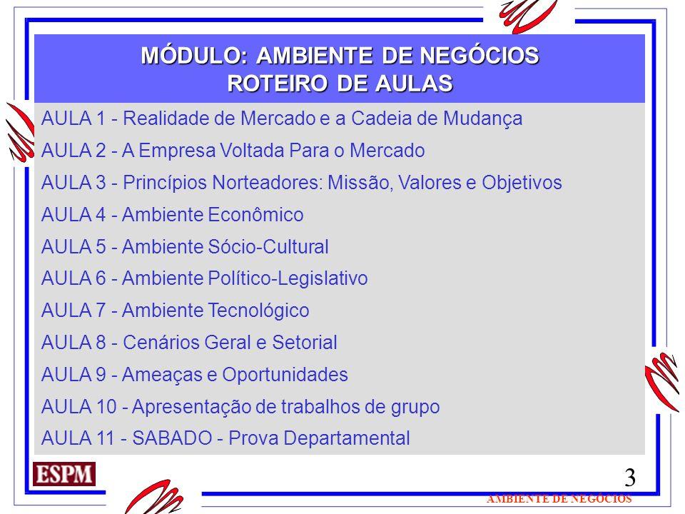3 AMBIENTE DE NEGÓCIOS MÓDULO: AMBIENTE DE NEGÓCIOS ROTEIRO DE AULAS AULA 1 - Realidade de Mercado e a Cadeia de Mudança AULA 2 - A Empresa Voltada Pa