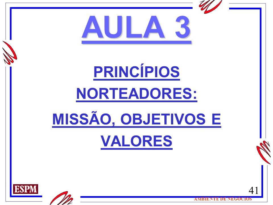 41 AMBIENTE DE NEGÓCIOS AULA 3 PRINCÍPIOS NORTEADORES: MISSÃO, OBJETIVOS E VALORES