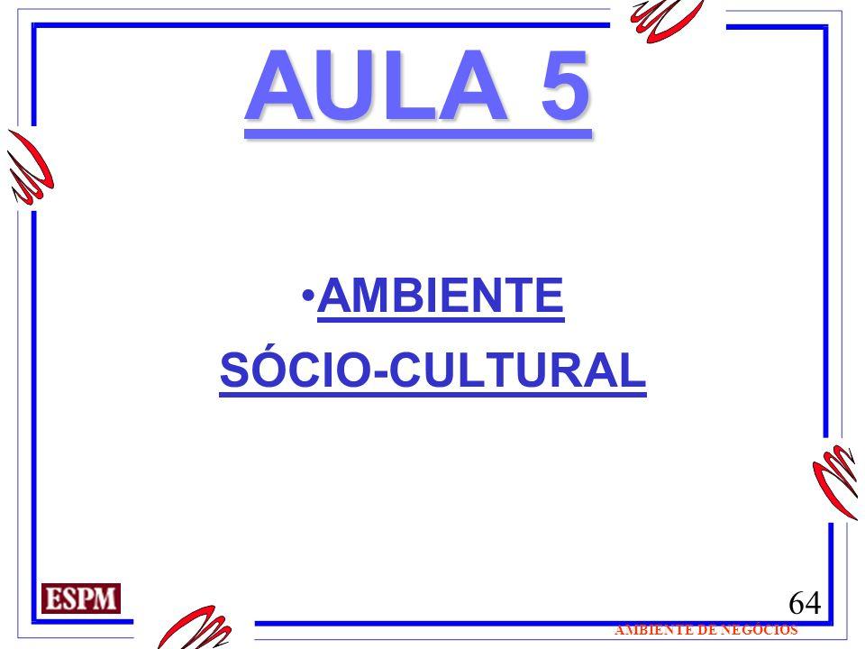 64 AMBIENTE DE NEGÓCIOS AULA 5 AMBIENTE SÓCIO-CULTURAL