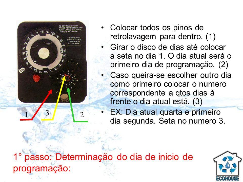 2° passo: Determinação dos dias de retrolavagem: Puxar para fora os pinos metálicos nos dias de retrolavagem do equipamento, a partir do dia atual (seta vermelha).