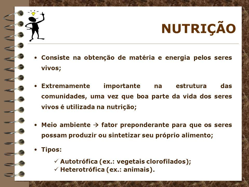NUTRIÇÃO Consiste na obtenção de matéria e energia pelos seres vivos; Extremamente importante na estrutura das comunidades, uma vez que boa parte da v