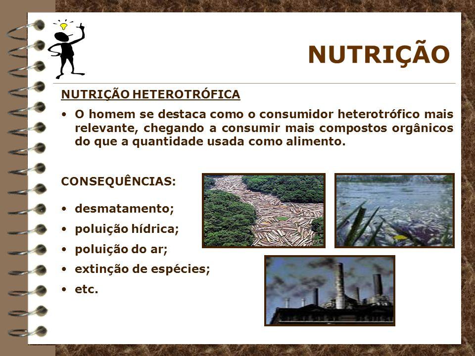 NUTRIÇÃO NUTRIÇÃO HETEROTRÓFICA O homem se destaca como o consumidor heterotrófico mais relevante, chegando a consumir mais compostos orgânicos do que