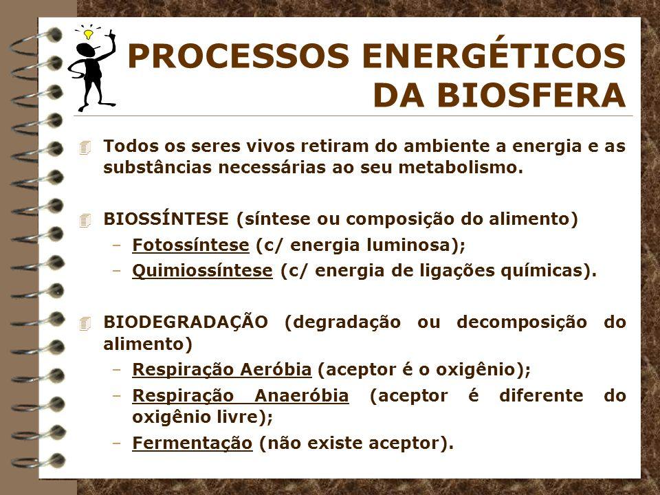 4 Todos os seres vivos retiram do ambiente a energia e as substâncias necessárias ao seu metabolismo. 4 BIOSSÍNTESE (síntese ou composição do alimento